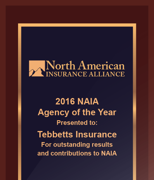 2016 agency of the year graphic new - Umbrella Insurance